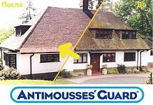 Anti-Mousses Guard
